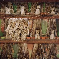 Fotografia przedstawia suszone zioła - w nawiązaniu do tytułu wpisu, czyli Kaszuby 2016